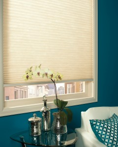 Applause® honeycomb shades with SimpleLift