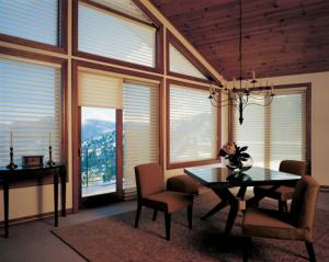 Specialty Window - Angled Window