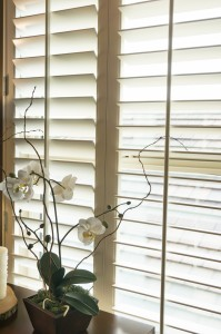 Wood frame plantation style shutters